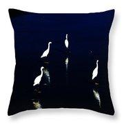 Egret Reflections Throw Pillow by David Lane