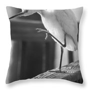 Egret Tai Chi Throw Pillow
