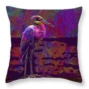 Egret White Bird Beach Wildlife  Throw Pillow