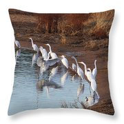 Egrets Gathering For Fishing Contest. Throw Pillow
