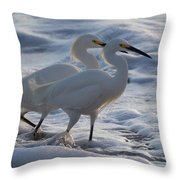 Egrets In The Shallows Throw Pillow