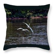 Egrets V Throw Pillow