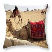 Egypt - Camel Getting Ready For The Ride Throw Pillow