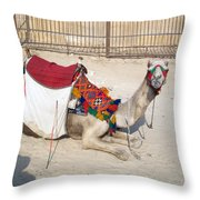 Egypt - Camel Throw Pillow