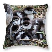 Egyptian Goose Alopochen Aegyptiacus Throw Pillow