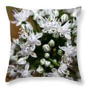 Egyptian Onion Throw Pillow