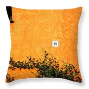 Eighteen On Orange Wall Throw Pillow