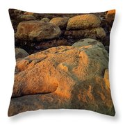 El Capitan Texas Throw Pillow