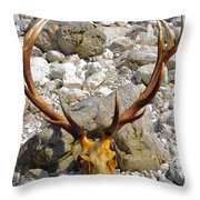 Al Cervo Throw Pillow