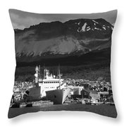 El Fin Del Mundo Throw Pillow