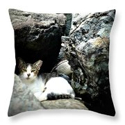 El Gato IIi Throw Pillow