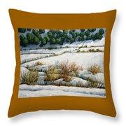 El Llano Throw Pillow