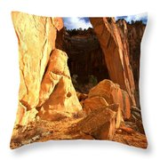 El Malpais La Ventana Arch Throw Pillow