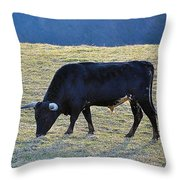 El Toro Throw Pillow by Jan Amiss Photography