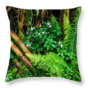 El Yunque National Forest Ferns Impatiens Bamboo Throw Pillow