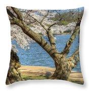 Elder Cherry Tree Throw Pillow