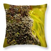Elderberry Throw Pillow
