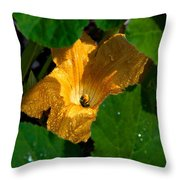 Eldorado For Bees Throw Pillow