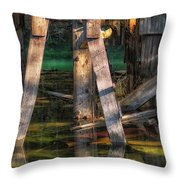 Eleanor Throw Pillow by Bitter Buffalo Photography