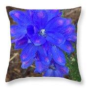 Electric Blue Flower Throw Pillow