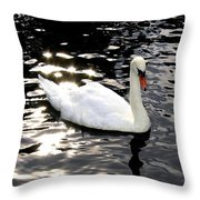 Electric Waters Throw Pillow