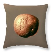 Electrum Nugget, C1100 B.c Throw Pillow
