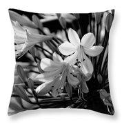 Elegance - Bw Throw Pillow
