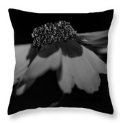 Elegance In Black And White Throw Pillow