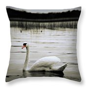 Elegance In Motion Throw Pillow