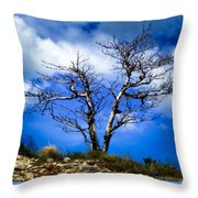 Elegance Of Time  Throw Pillow