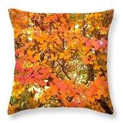 Elegant  Autumn Throw Pillow