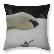 Elegant Beauty Throw Pillow