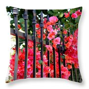 Elegant Fence Throw Pillow