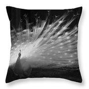 Elegant In White Throw Pillow