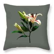 Elegant Lily And Buds Throw Pillow