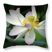 Elegant Lotus Throw Pillow