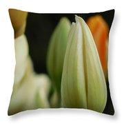 Elegant Tulip Throw Pillow