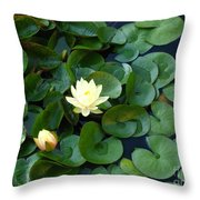 Elegant Water Lily Throw Pillow