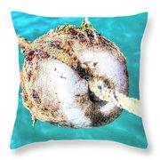 Element Sea Throw Pillow