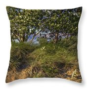 Elements At Play 2015 Throw Pillow
