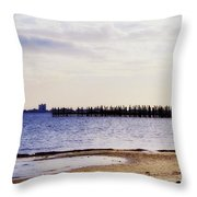 Elements On The Coast Throw Pillow