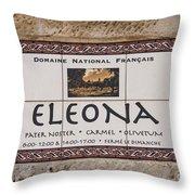 Eleona Throw Pillow