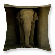 Elephant #1 Throw Pillow