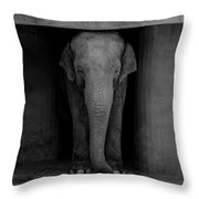 Elephant #2 Throw Pillow