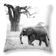 Elephant And Baobab Throw Pillow