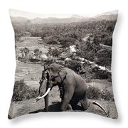 Elephant And Keeper, 1902 Throw Pillow