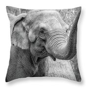 Elephant And Tree Trunk Black And White Throw Pillow
