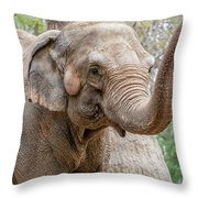 Elephant And Tree Trunk Throw Pillow