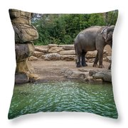 Elephant And Waterfall Throw Pillow