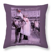 Elephant At Amber Fort Throw Pillow